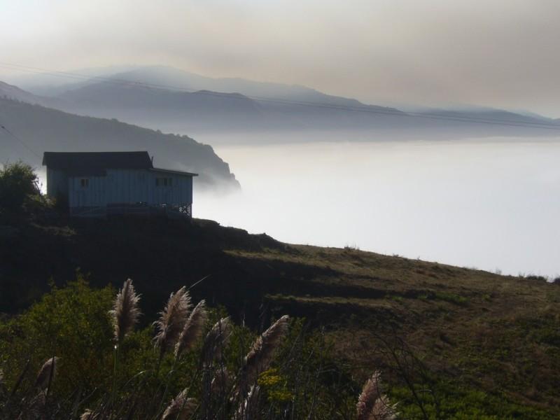 Misty Big Sur morning, Calfornia