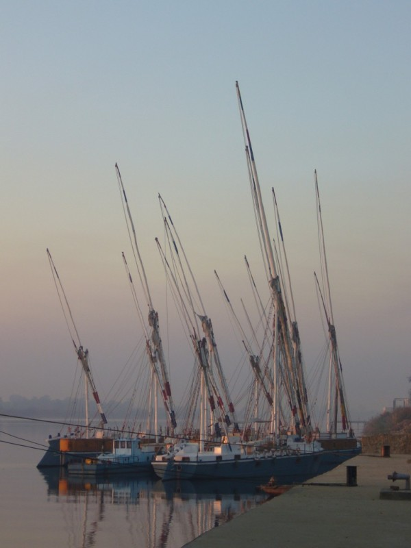 Feluccas on the Nile at dawn