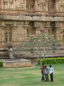 Brihadisvara Temple, Tanjore