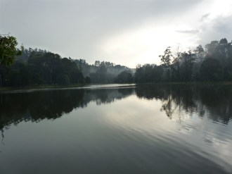 Kodaikanal in the Western Ghats