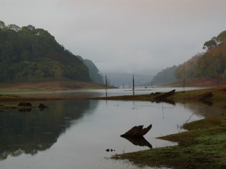 Early morning at Periyar Tiger Reserve.